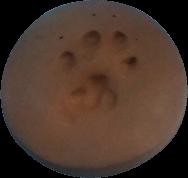 clay-paw-print