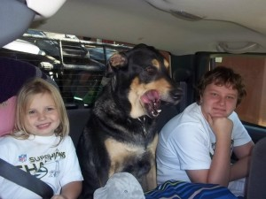 Dog between 2 kids in the car - everyone looks happy