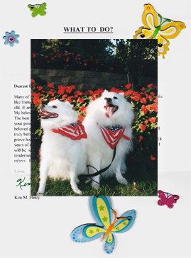 The testimonial letter has butterflies and other decorations, dog picture is superimposed on top